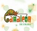 camaleon_120